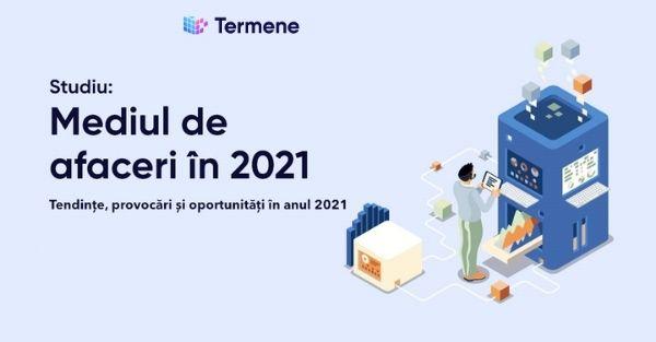 Studiu Termene - Mediul de afaceri în 2021