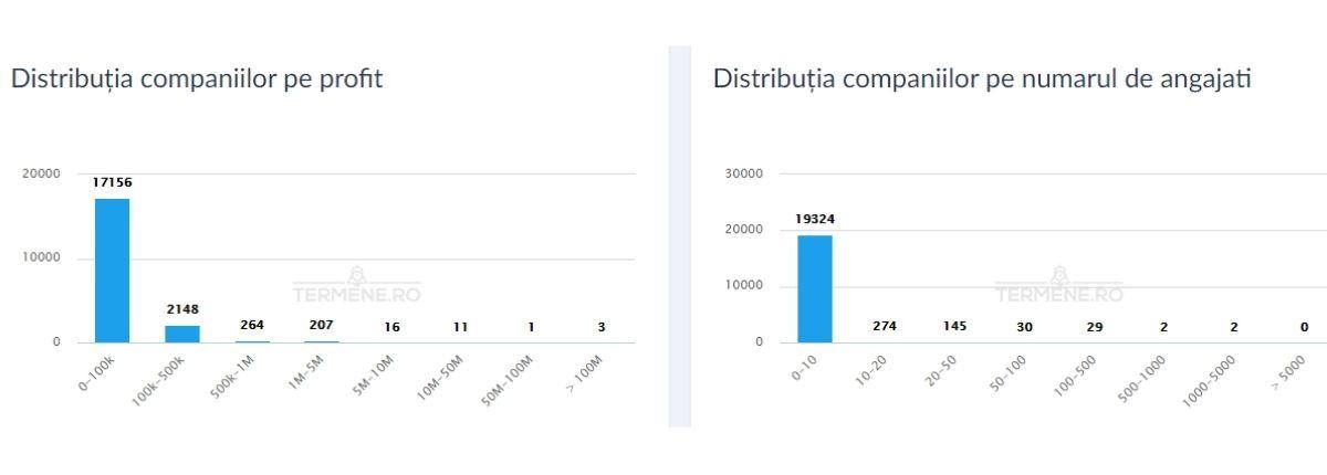 CAEN 7022- Distribuția companiilor pe profit și număr de angajați