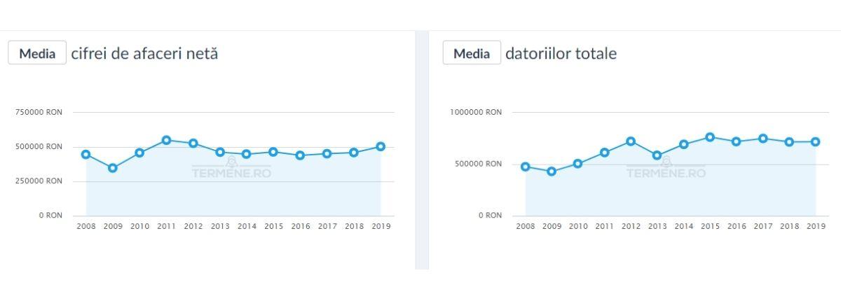 CAEN 7022 - Media cifrei de afaceri și a datoriilor totale